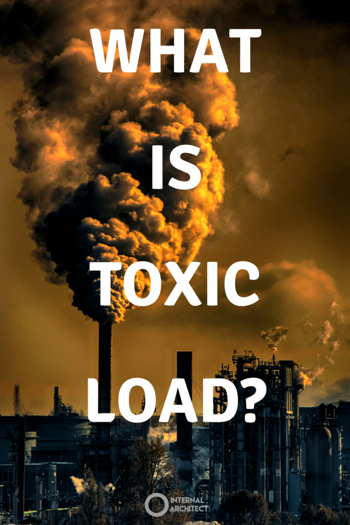 """Comercial plant creating smog with the words """"what is toxic load""""."""